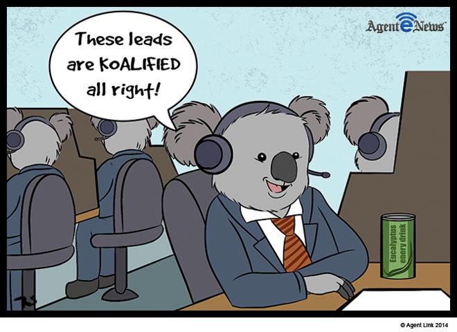 Koalafications